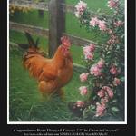 Brian Darcy - Spring Salon / International Guild Of Realism