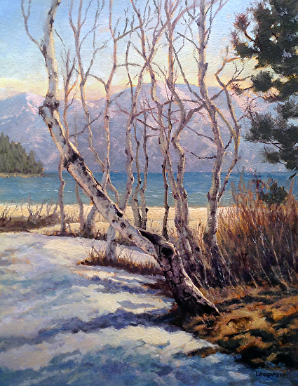 Old Tahoe Aspen - Oil