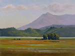 "Mt. Tam from Lakeville Rd. by Christin Coy Oil ~ 9"" x 12"""