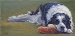 "Mac and the Slipper by Christin Coy Oil ~ 6"" x 12"""