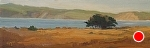 "Drakes Bay from Limantour by Christin Coy Oil ~ 4.5"" x 12"""