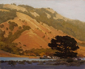"Bolinas Ridge Late Light by Christin Coy Oil ~ 8"" x 10"""