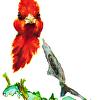 Cardinal Red Crest