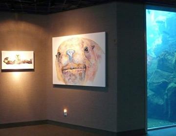 Alaska SeaLife Center Exhibition by V Rae  ~  x