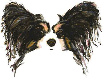 papillon by V Rae  ~  x
