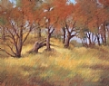 Fall Woods by Virginia Carruth Pastel ~ 16 x 20