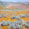 Antelope Valley - A Tapestry Of Royal Yellow and Ming Grey