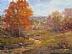 Autumn Walk by Shaunna Duffy Smith