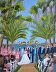 Vows at Paradise Cove by Diana Crow
