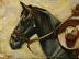 """Sombrero Ride"" by Bobbi Dunlop"