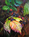 Blackberries by Dennis Dame Oil ~ 10 x 8