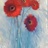 Gerberas in Red