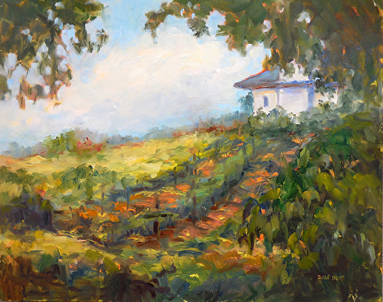 Secluded Vineyard - Oil