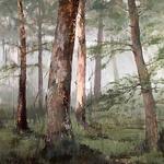 Karen Philpott - Elements of the Landscape: Into Trees