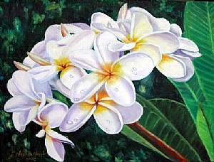 "Plumeria III by J. Stephen Street Oil ~ 18"" x 24"""
