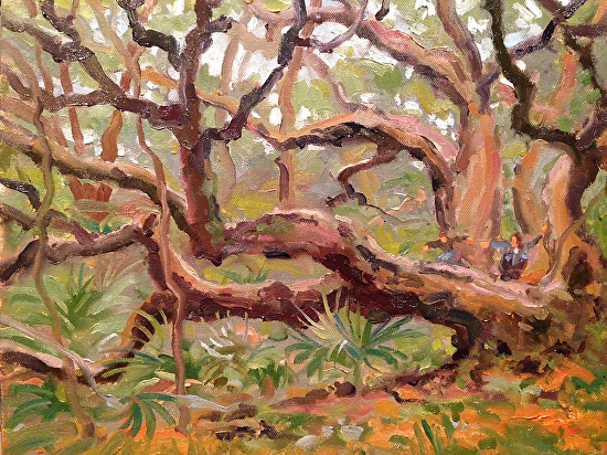 Out on a limb in the Carolina Jungle - Oil