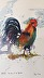 2017 The Year of the Rooster, wc by Maggie Rapp