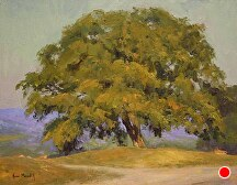 Lovely Tuscan Tree by Kami Mendlik Oil ~ 11 x 14