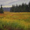 Soft Meadow On Madeline Island