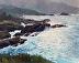 Point Lobos by Maria Danguole Klar