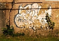 "American Grafitti, Livin Large in Union, NJ by Alan Wood Photograph ~ 8"" x 10"""