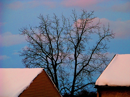 "2/14/2010 Winter Skies over Emmaus by Alan Wood Photograph ~ 11"" x 14"""
