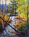 Long Lake Creek by Judy Crane by  PAINTNC  ~  x