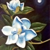 Moonlight and Magnolias I I