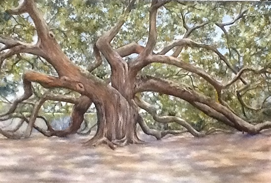 Angel Oak - Oil