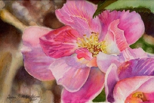In the Pink by SUSAN J ATKINSON Watercolor ~ 7 x 10