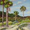 Five Beach Palms by Mary St. Germain Oil ~ 24 x 18