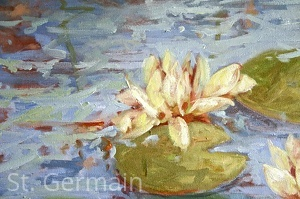 2012 Water Lily, Botanicals