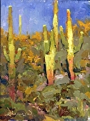 Saguaros Past by John Burton Oil ~  x