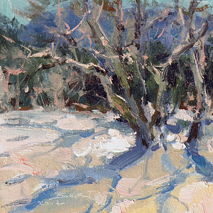 Arizona Snow by John Burton Oil ~  x