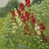 Hollyhocks-Red and White
