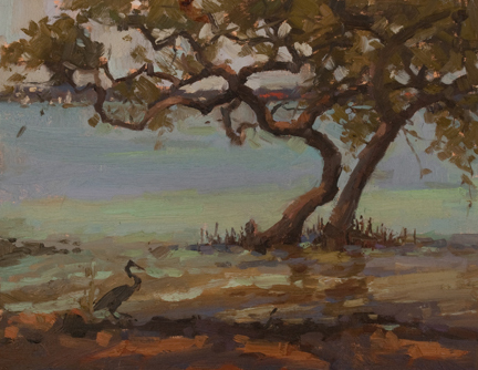 Mangrove Wader copy by Katie Dobson Cundiff Oil ~ 11 x 14