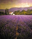 Lavender for Harvest    (2008) by Dan O'Rourke Oil ~ 24 x 20