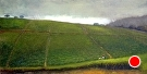 Tea Field and Approaching Storm (2008) by Dan O'Rourke Oil ~ 24 x 48