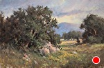 Spring Storm by Yvonne Branchflower Oil ~ 8 x 12