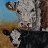 Hereford Cow with Baldy Calf Study