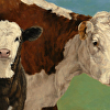 Cow and Calf on Blue/Green  (Hereford and Black Baldy)