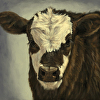 Motley Moo  (Brockle Face Calf)
