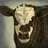 Motley Moo  (Brockle Face Calf)