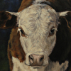 Portrait of a Young Hereford