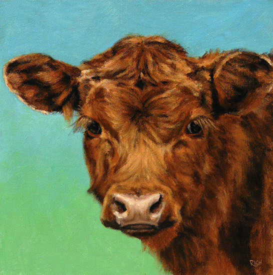 red calf on blue green 12x12 -