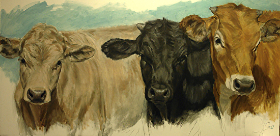 Three Graces (Charolais, Black and Jersey Cow Painting) - Oil
