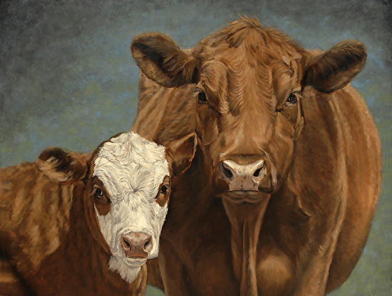 Red, White and Moo  (Cow and calf painting by Denise Rich) - Oil