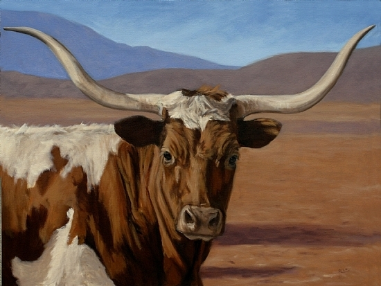 texas longhorn oil portrait painting