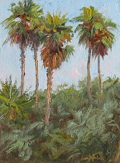 Five Tall Palms - Oil