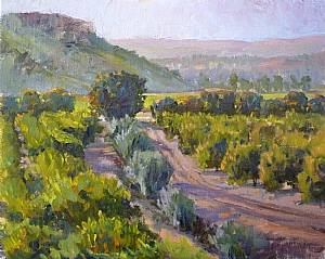 Orange Grove in the Late Afternoon by Sharon Weaver Oil ~ 8 x 10